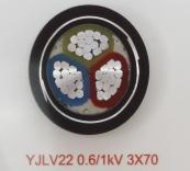 YJLV22 0.6/1kV 3X70