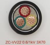 ZC-VV22 0.6/1kV 3X70