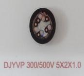 DJYVP 300/500V 5X2X1.0
